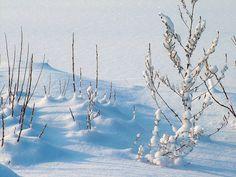 Astuces santé préventives pour l'hiver #Santé