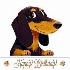 Happy Birthday Dachshund, Happy Birthday Video, Happy Birthday Wishes Cards, Happy Birthday Girls, Happy Birthday Pictures, Birthday Wishes Quotes, Animal Birthday, Dog Birthday, Cute Screen Savers