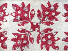 Appliqué quilt with colorful oak leaves.Signed H.N.D. 1840..would be lovely done in the Dutch Chintz fabrics...
