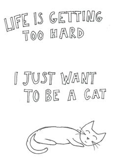 i just want to be a cat