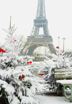 """""""Rare snowy day in Paris. The Eiffel Tower and decorated Christmas tree"""" - Paris Stock Photo from Go Graph Beautiful World, Beautiful Places, Beautiful Pictures, Wonderful Places, Amazing Places, Wonderful Time, Places To Travel, Places To Go, Winter Szenen"""