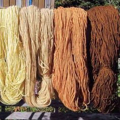 Learn how to make beautiful plant-based dyes for wool, cotton, silk, and linen fabrics and yarn. Natural Dye Fabric, Natural Dyeing, Tie Dye Techniques, How To Age Paper, Mother Earth News, Spinning Yarn, How To Make Homemade, How To Dye Fabric, Colors