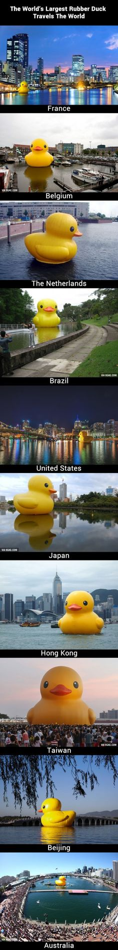 The World's Largest Rubber Duck Travels The World