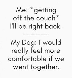 37 Funny Quotes and Sayings That Pack a Punch of Laughter - Page 2 of 2 - ViralAPK.Com dog funny dog funny funny aesthetic funny face funny hilarious funny quotes funny sleeping Dump A Day, Little Dogs, I Love Dogs, Cute Dogs, Funny Memes, Hilarious, Puppy Quotes Funny, Puppy Love Quotes, Funny Quotes About Dogs