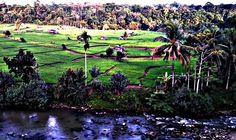 Panorama alam Taba Penanjung Bengkulu
