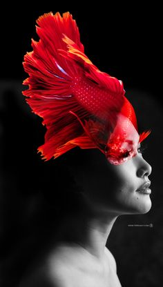 Double exposure beautiful red fish and black&white woman photo. Powered by T4 project