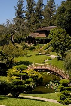 Huntington Library Garden (U.E.A)