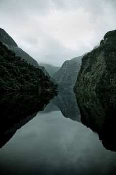 Doubtful Sound, South Island, New Zealand. Beautiful, brooding wilderness at the bottom of the South Island