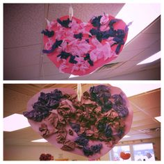 valentine's day auckland 2014