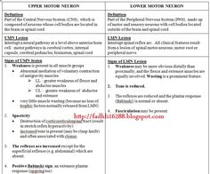 upper motor neuron vs lower motor neuron ~ medik-ukm