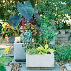 Skip the spendy store-bought concrete containers and make your own one with this easy project.