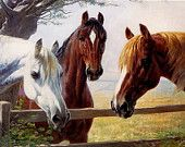 Counted Cross Stitch Pattern: Three Horses