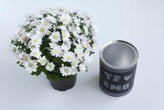 Faça você mesmo: vasinho com lata de alumínio | http://www.blogdocasamento.com.br/ldecoracao-com-lata-de-aluminio/