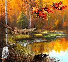 Most Beautiful Autumn | Most Beautiful Fall