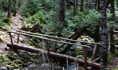 5 Best Waterfalls in the Halifax Region Nova Scotia Travel, Best Hikes, Canada Travel, Garden Bridge, East Coast, Waterfalls, Bridges, Hiking, Camping