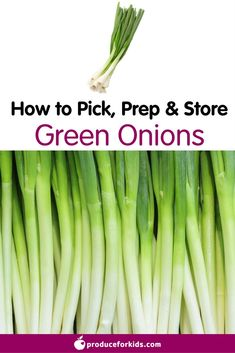 How to Pick, Prep & Store Green Onions + nutrition information, recipes, fun facts and more! Kids Nutrition, Types Of Vinegar, Cucumber Canning, Best Pickles, Nutritional Value Of Eggs, Homemade Pickles, Nutrition Information, Gardens
