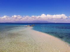 Panal Reef, Sagay City, Negros Occidental, Philippines