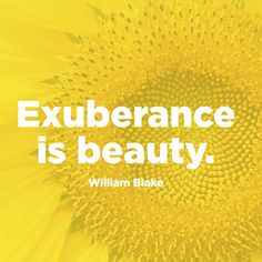 Quote About Beauty - Exuberance Quotes - William Blake
