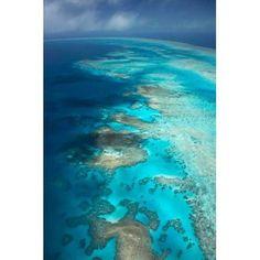 Arlington Reef Great Barrier Reef Marine Park North Queensland Australia Canvas Art - David Wall DanitaDelimont (24 x 36)