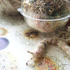 'Tumbleweed Colony' in conjunction with the Textile Art Center's Sewing Seeds program   Abigail Doan (2015): http://abigaildoan.blogspot.com/2015/04/save-dates-tumbleweed-colony.html