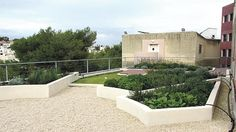 If you cannot keep up with electricity bills this summer because air-conditioners are constantly switched on, green roofs could be your solution. It is estimated that green roofs can cut air conditioning use by as much as 40 per cent and a study by the University of Malta, which ends this week,...