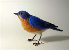 This life-sized Eastern Bluebird is about 7 from beak to tail and is felted of 100% wool. Bluebirds, with their bright blue breeding plumage and cheery red chests, are members of the thrush family, like their red-breasted cousin, the Robin. One of the most beloved of birds, bluebirds are a symbol of happiness and optimism. They eat insects, berries, snails and worms. Theyre social birds, often found in flocks near fields, farms and open land with scattered trees, and like to nest in old…