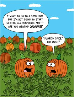 This one made me laugh! 67 Fall & PSL Memes That Will Make You Laugh - after a long day at work, sit back and laugh a little with these fall and pumpkin spice latte memes. Halloween Humor, Halloween Cartoons, Halloween Fun, Halloween Pictures, Holidays Halloween, Halloween Pumpkins, Fall Pumpkins, Vintage Halloween, Christmas Holidays