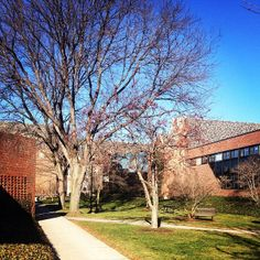Spring on campus!