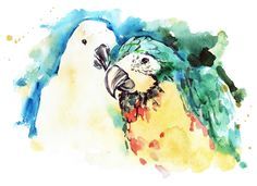 Wall Art Road - Watercolour Cockatoo Canvas Print ~ Part of the Tropic Series, $150.00 (http://www.wallartroad.com/watercolour-cockatoo-canvas-print-part-of-the-tropic-series/)