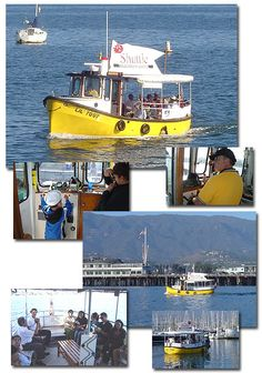 Ride the Lil' Toot between the Santa Barbara Harbor and Stearns Wharf.