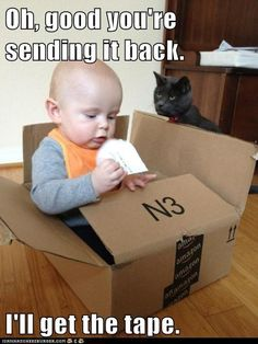 Image detail for -Lolcats: Oh, good you're sending it back. - Cheezburger