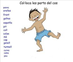 Les parts del cos. - Ficha interactiva Worksheets, Family Guy, Nature, Cos, Fictional Characters, Google, School, Human Body Parts, Color By Numbers