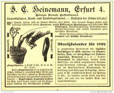 Original-Werbung/ Anzeige 1898 - FINGERSPATEN / KUNST-UND HANDELSGÄRTNEREI HEINEMANN ERFURT -  ca. 110 x 80  mm