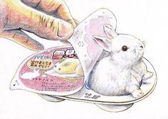 雪見うさぎ:rabbit