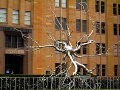 Sculpture of a Neuron on the front lawn of the Museum of Contemporary Art in Sydney; Free Walking Tour (Thu 17-6-2010).