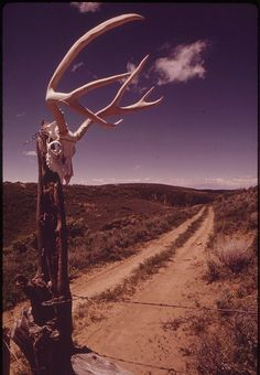 on the road. Mother Earth, Mother Nature, Mystic Moon, Desert Dream, Travel Light, Old West, The Ranch, Plein Air, Adventure Awaits