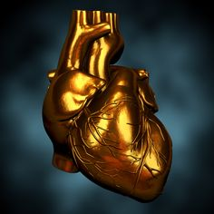 The hearts magnetic field is 5000 times stronger than the brain magnetic field and is directly connected with the magnetic field of mother earth