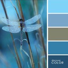 fantastic color pale