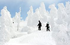 like the strong contrast in white snow good for some color accents with sculpture in ski basin Snowboarding In Japan, Skiing In Japan, Japan Honeymoon, Stations De Ski, Aomori, Snow Pictures, Winter Love, Winter Beauty, Ski And Snowboard
