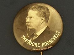 Campaign pin pinback button political badge election TEDDY ROOSEVELT.