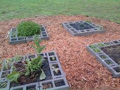 Cinder block herb gardens