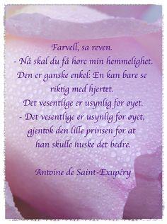 Vakre ord om vennskap, Den lille prinsen, Antoine de Saint-Exupéry, Sayings The little prince, sayings