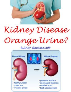 food to prevent kidney failure - after kidney transplant what to expect.effects of kidney failure 2905278662