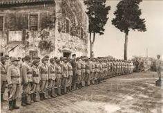 Resultado de imagem para força expedicionária brasileira