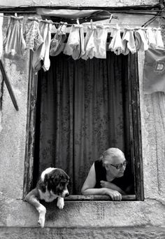 italy... such a fun photo with this dog peeking too out the window