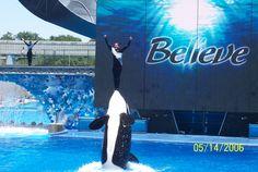 Sea World - Orlando, Florida