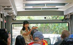 Guided safari tour at Bali Safari and Marine Park