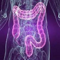 Het lekkende darm syndroom is een aandoening waar een groeiend aantal mensen mee worstelt. Veel mensen weten het niet eens. Door de naam zou je kunnen denken dat de aandoening alleen impact heeft o…