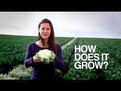 How does it grow video series: Cauliflower