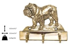 Bulldog dog hanger for clothes limited edition by ArtDogshopcenter